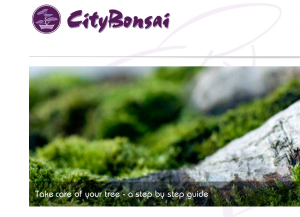 City Bonsai